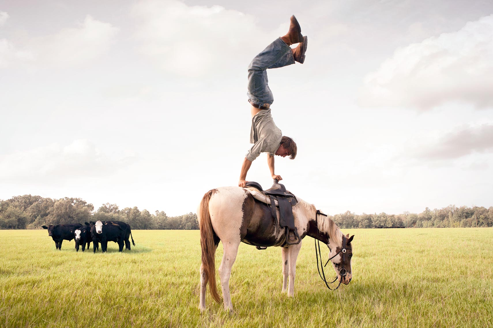 SMZ-Hunter-Cattle-Horse-Handstands-2